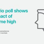 3rd poll web en